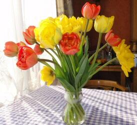 2014-7851-bloemen